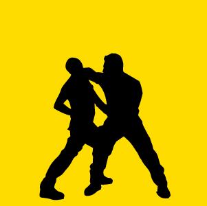 difesa personale icona